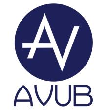 logo_Videojocs UB
