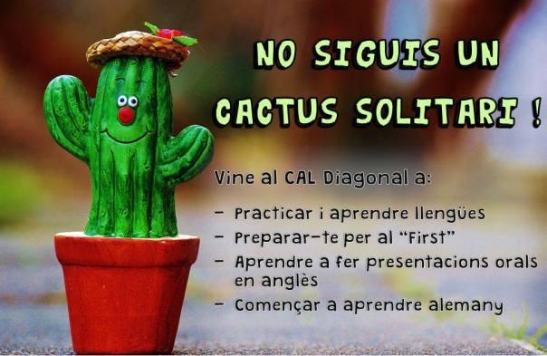 CactusSolitari_2016